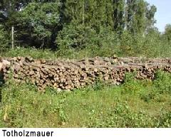 Totholzmauer