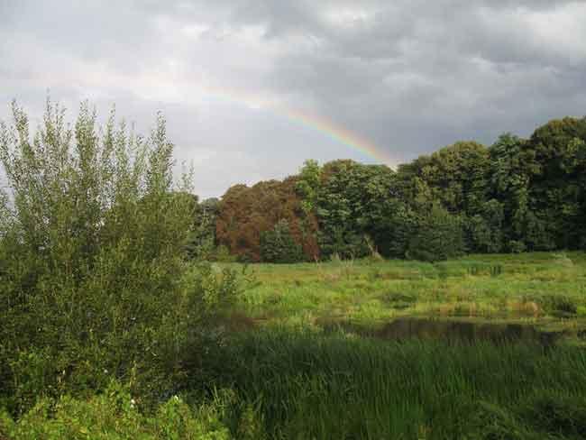 niepkuhlenregenbogen