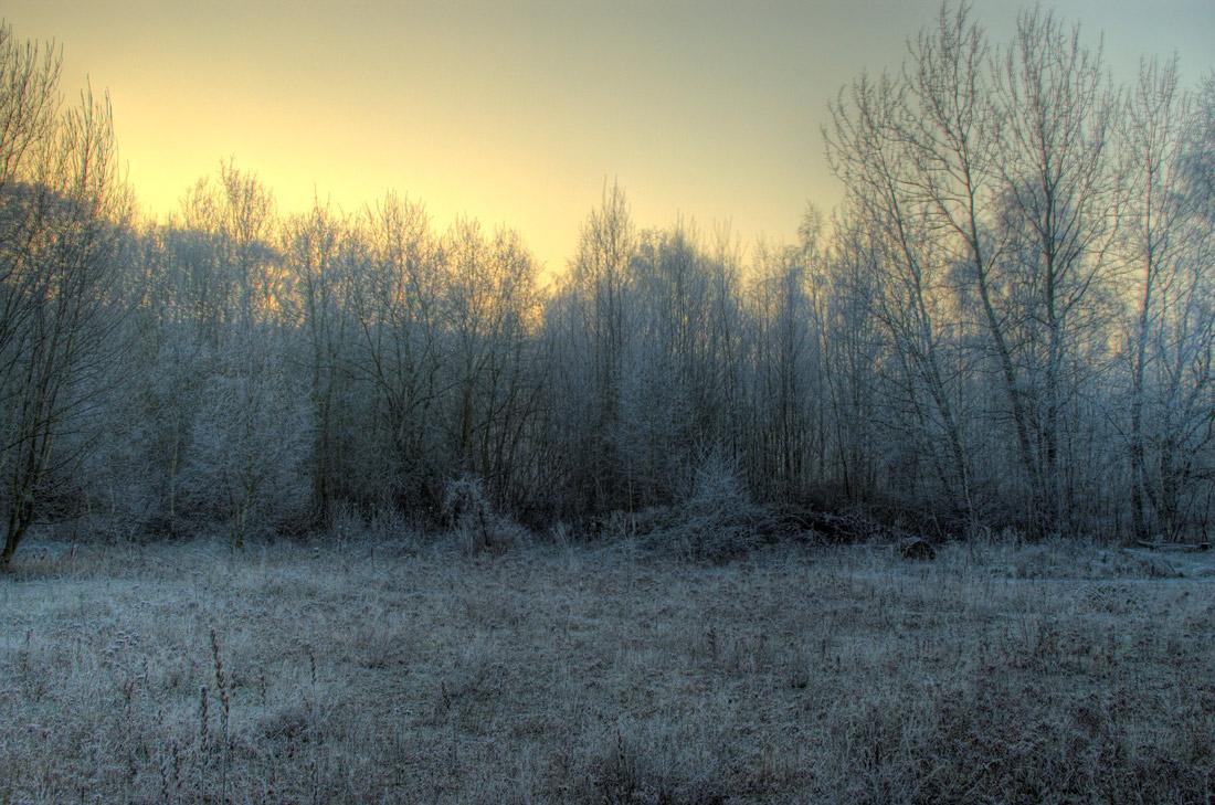 Winter im Umweltzentrum